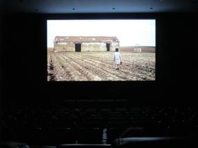 CinEd III - Crescer com o Cinema - O Espírito da Colmeia, de Victor Erice @ Cinemateca Portuguesa