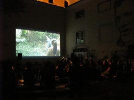No País do Cinema - Lusco Fusco 2019