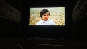 CINED IV - Crescer com o Cinema IV - Grupo 1 - O Espírito da Colmeia, de Victor Erice @ Cinemateca Júnior